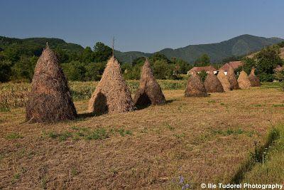 TUDOR  PHOTO  BLOG: Lumea Disparuta de pe Valea Densus-judetul Hunedoa...
