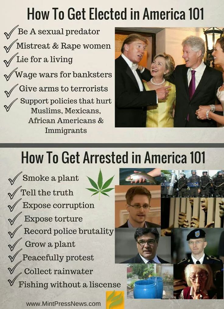 How to Get Elected in America 101: *Be a sexual predator *Mistreat & rape women *Lie for a living *Wage wars for banksters *Give arms to terrorists *Support policies that hurt Muslims, Mexicans, African Americans & immigrants | How to Get Arrested in America 101: *Smoke a plant *Tell the truth *Expose corruption *Expose torture *Record police brutality *Grow a plant *Peacefully protest *Collect rainwater *Fishing without a license | This is America in the 21st Century