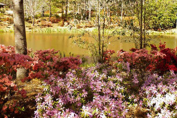 41 best callaway gardens ga images on pinterest callaway gardens nature and georgia usa for Places to stay near callaway gardens