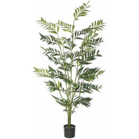 Vickerman 5' Artificial Green Robellini Palm with 537 Leaves