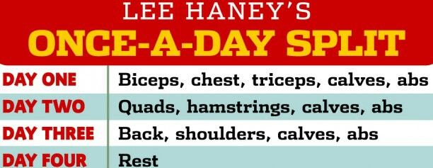 Lee Haney once-a-day-split