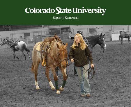 11 Best Images About Colorado State University On Pinterest