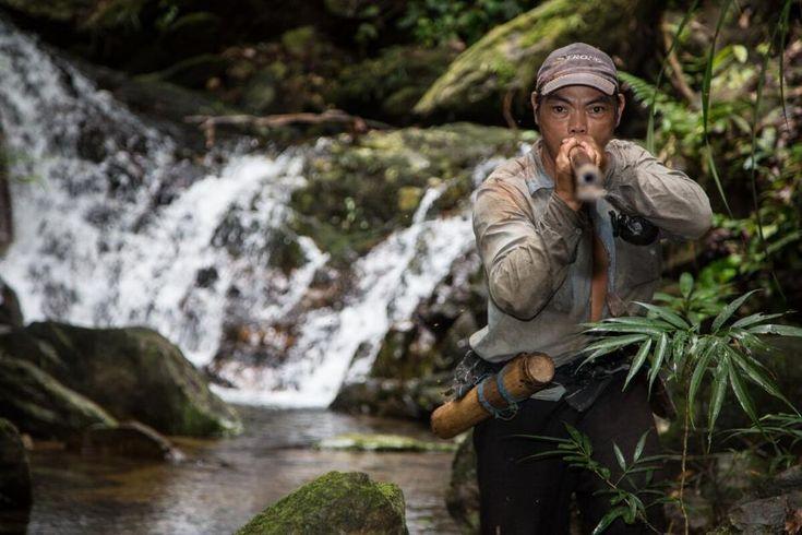 Borneos jæger-samlere jager blandt ånder og dæmoner For penanerne på Borneo er jagt ikke bare jagt. Jagt er en ritualiseret proces, hvor fugleorakler og ånder spiller en vigtig rolle, og hvor man kan blive ædt af dæmoner, hvis man ikke passer på.