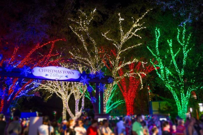 efb48c448118c9a1870d7e719b58ebd1 - When Does Busch Gardens Close For The Winter