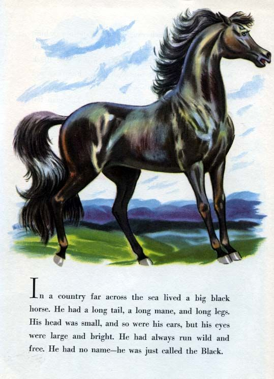 how to break horses book