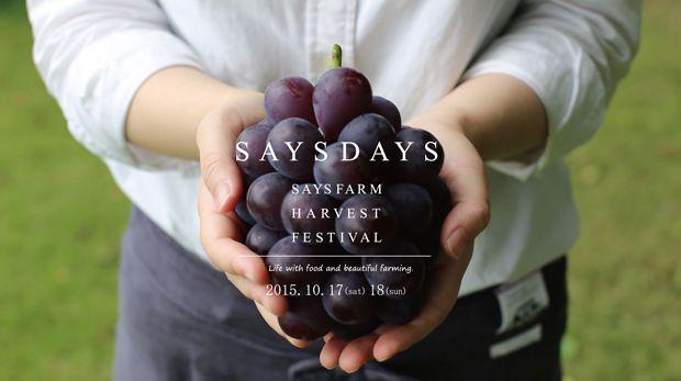 北陸でワインをつくり続けて、8年。SAYS FARMがプレミアムな収穫祭「SAYSDAYS」を開催|ローカルニュース!(最新コネタ新聞)富山県 氷見市|「colocal コロカル」ローカルを学ぶ・暮らす・旅する
