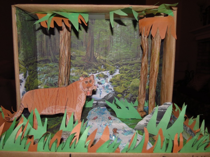 Liger diorama made with construction paper cellophane glitter and shoe box school projects for Construction habitat