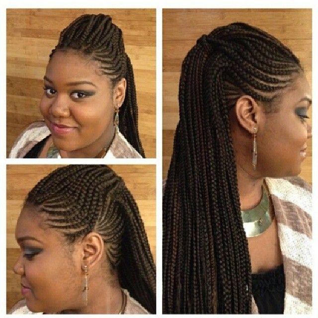 Braids Twist Natural Hair Protective Styles Braids Twist