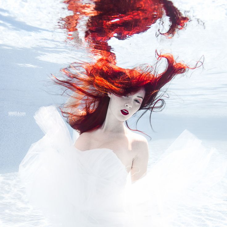 17 Best images about Underwater Photography on Pinterest ...