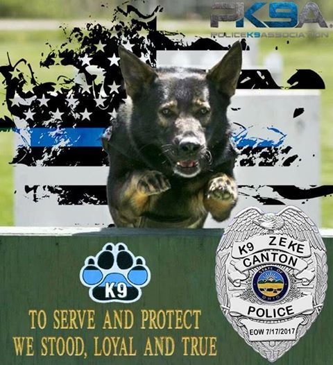 Canton OH PD K9 Zeke EOW: 7/17/17 Handler: Chris Heslop