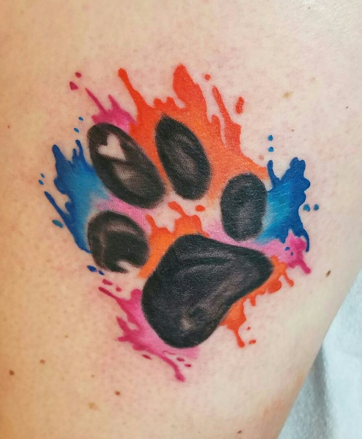 Paw print tattoo  German Shepherd paw + water colors = makes me smile ! ♡