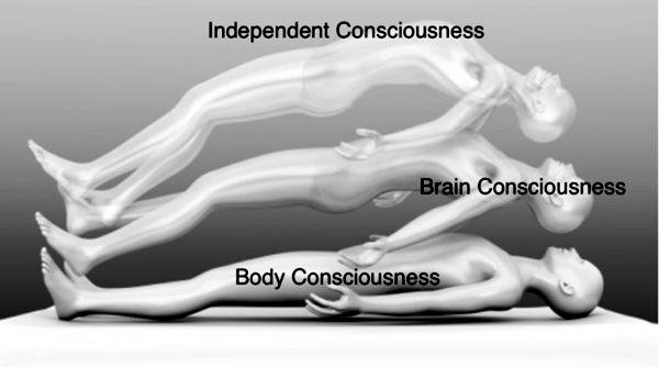 Ett litet lästips för dem som intresserar sig för forskning kring människans medvetande.
