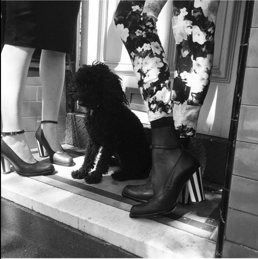 Edgeley & Tusler in Clara Heels #fashionistas #prestonzlydesign #bespokeshoes