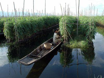Kans: Agricultuur óp het water. In Burma is dit gewoon. Floriade 2022?