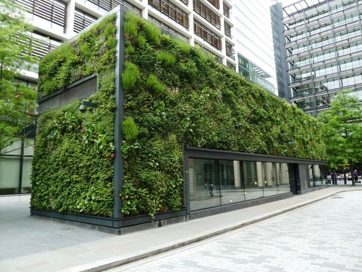"New Street Square, Holborn | Biotecture  ""This huge and impressive green wall envelopes the Estates Office of Land Securities. """