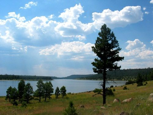 20 best beautiful views in flagstaff az images on for Fishing in flagstaff