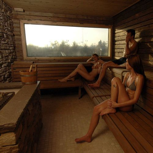 Finnish sauna / for professional use / for indoor use STUBE Starpool