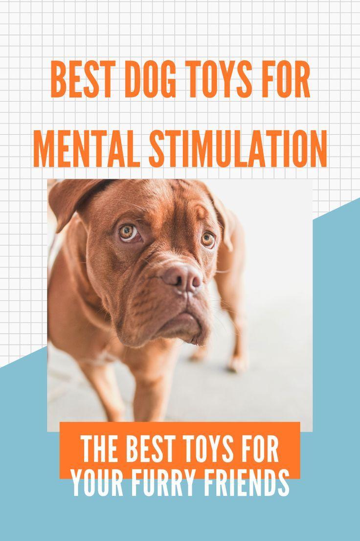 Bark Box Small Dog Toys Dog Toys For Boredom Best Dog Toys