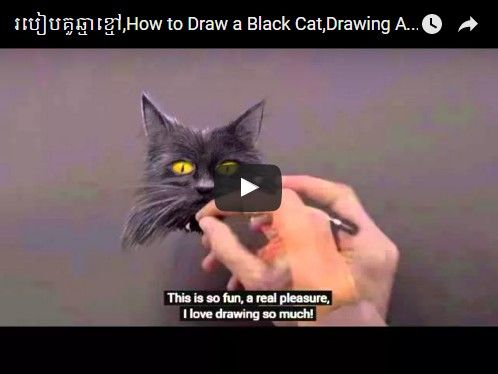 Beautifulplace4travel: របៀបគូឆ្មាខ្មៅ,How to Draw a Black Cat in 3d Time Lapse Video