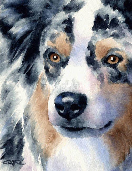 Australian Shepherd dog watercolor art print #decor #pets