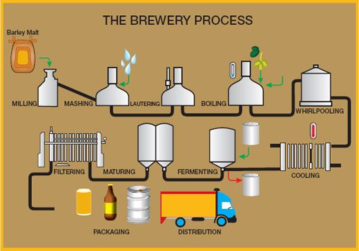 How brewers make delicious beer. OR the brewery process.