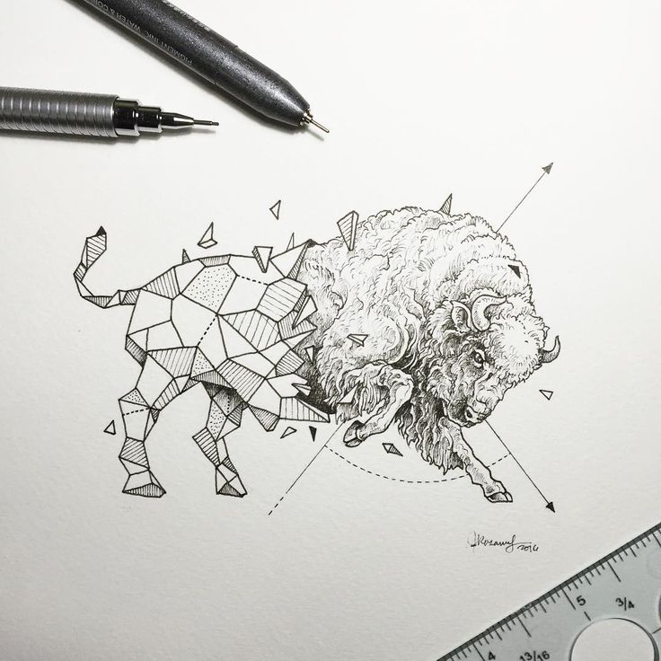 geometric illustrations