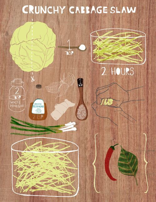 style, color, instructions: Cabbages Projects, Hands Drawn Style, Recipe Food Illustrations, Illustrations Food, Illustrations Recipes, Slaw Recipes, Crunchi Cabbages Slaw, Recipes Tips How, Recipes Illustrations