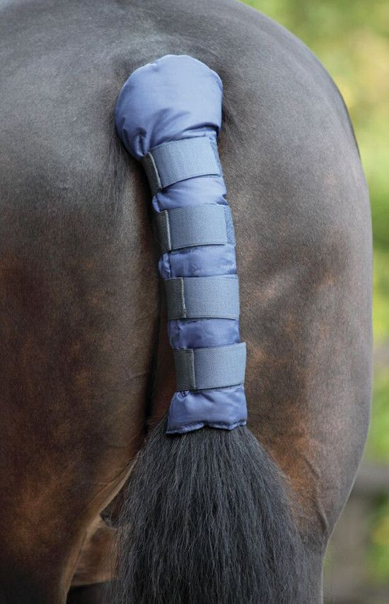 Tail Guard On Horse