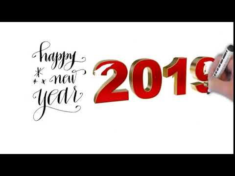 Happy New Year 2019 Happy New Year 2019 Pest Control Pests