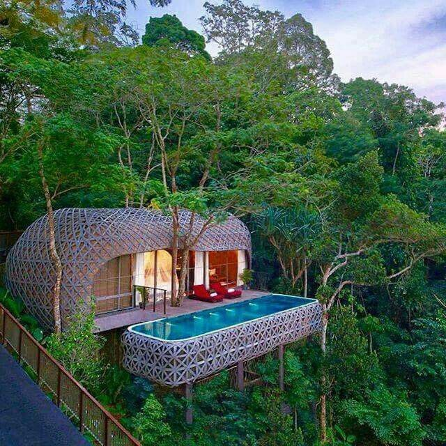 Thailand                                                                                                                                                      More