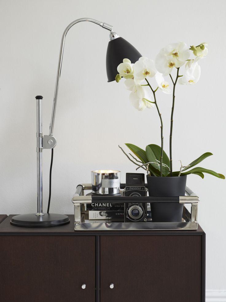 Inspirerende orkideer kan brukes i alle rom i hjemmet. Denne vakre planten gir det lille ekstra.