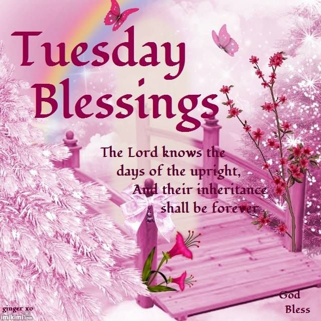 Tuesday Blessings.. Psalms 37:18-God Bless.YES‼ I Lenda VL AM the February 2017 Lotto Jackpot Winner‼000 4 3 13 7 11:11 22Universe Please Help Me I Am GRATEFUL‼