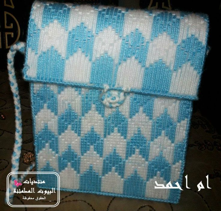 a bag  from plastic canvas