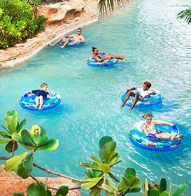 Discover Atlantis Paradise Island with these special vacation packages. Learn more about our Bahamas vacation deals and book your next getaway today!