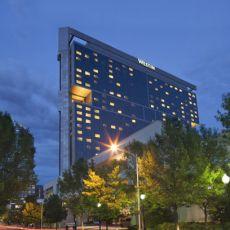 Dog friendly hotel in Charlotte, NC - Westin Charlotte