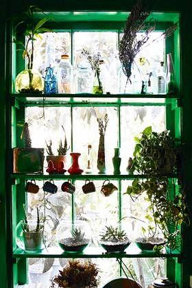 GRØNN BØLGE: I Los Angeles er bohemsk grønnsvær populært. Grønnmalt vinduskarm og hyller pyntes med flasker og vekster for en grønnest mulig...