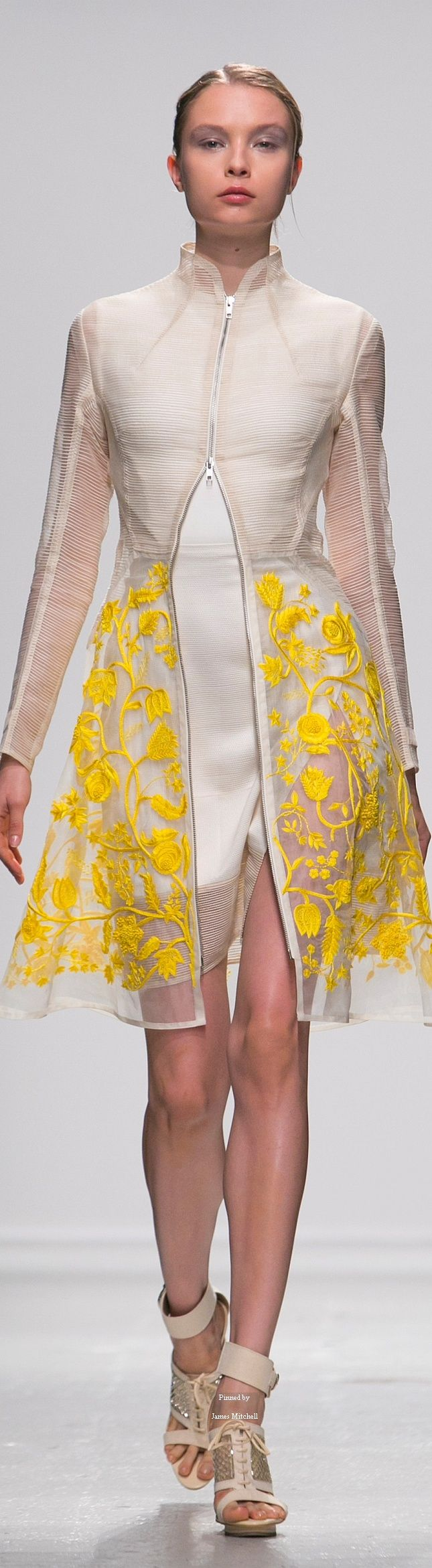 Rahul Mishra Spring Summer 2015 Ready To Wear collection
