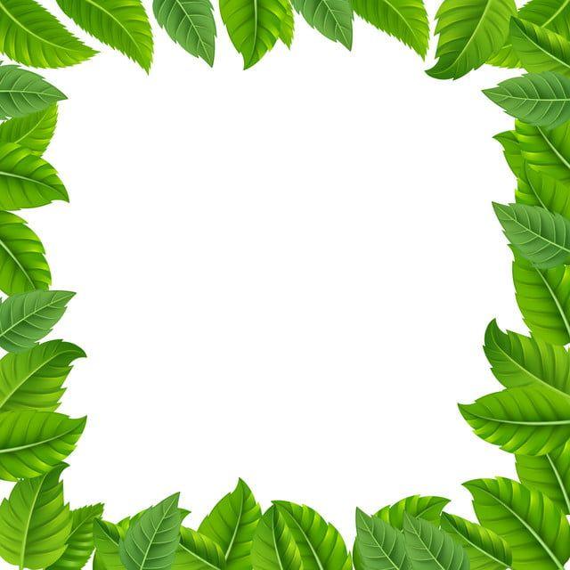 Tropical Leaf Border Frame Green Leaf Icons Green Icons Frame Icons Png Transparent Clipart Image And Psd File For Free Download Leaf Border Tropical Leaves Leaf Background