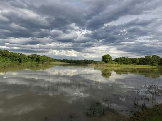 Laguna El Breal. PN de El Chaco. Argentina