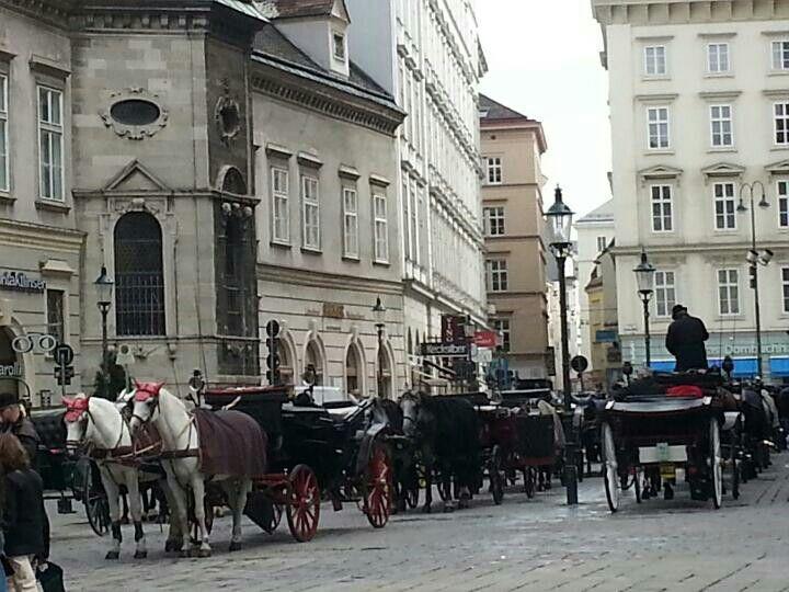 오스트리아 빈 (비엔나) 성 스테판 대성당 St. Stephaen's Cathedral & City Hall, Vienna (Wein), Austria