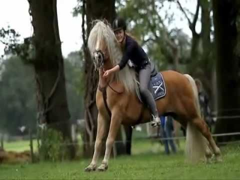 L'équitation pas un sport ? Non, c'est bien plus. - YouTube
