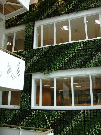 Interior Green Wall bringing improved air and conditions to an office space #office #airpurification