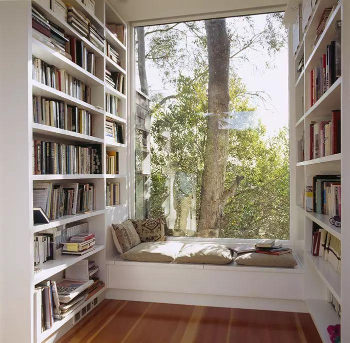 Angolo lettura stile classico contemporaneo - alla finestra circondati da libri e natura