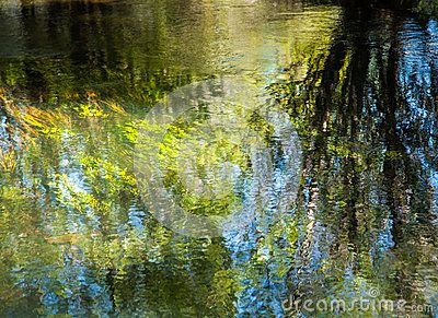 River Grass And Tree Reflection - Download From Over 38 Million High Quality Stock Photos, Images, Vectors. Sign up for FREE today. Image: 62714370
