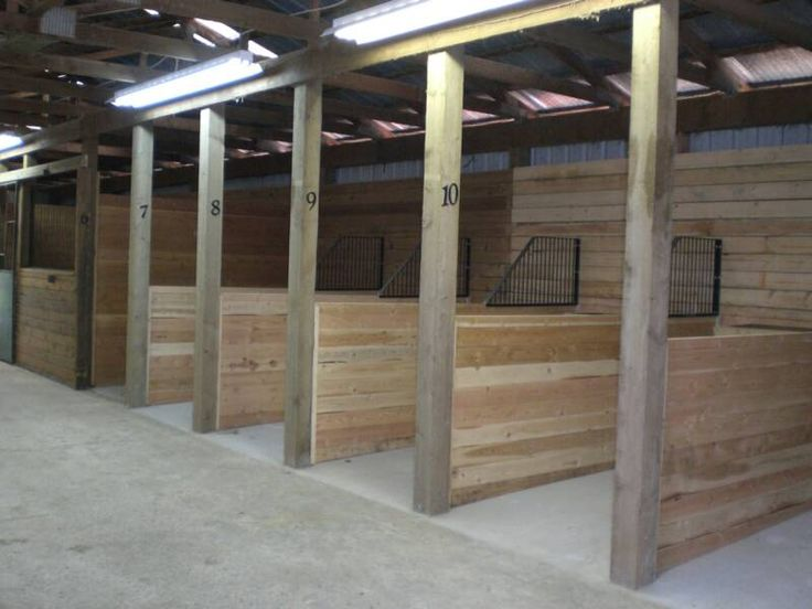 Clean, safe, individual tie stalls for grooming and ...