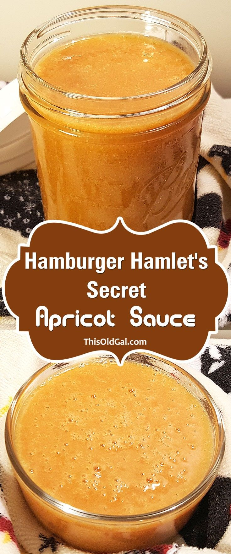 Hamburger Hamlet's Secret Apricot Sauce {Dipping Sauce} via @thisoldgalcooks