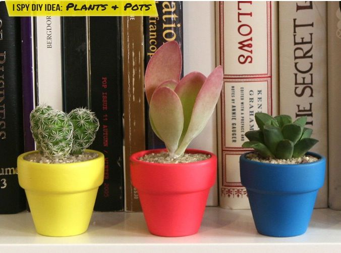 DIY INSPIRATION | Plants & Pots | I SPY DIY