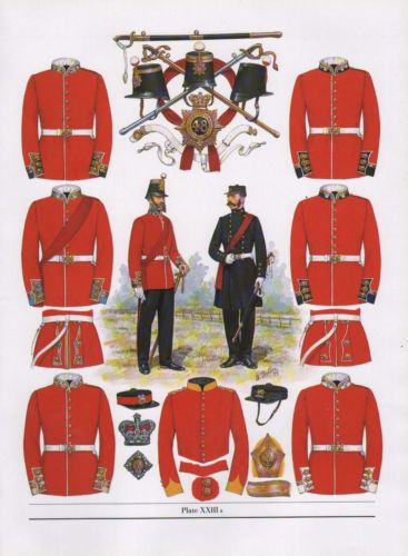 VINTAGE MILITARY BRITISH UNIFORM ARMY PRINT ~ 1856 INFANTRY OF THE LINE OFFICERS | eBay