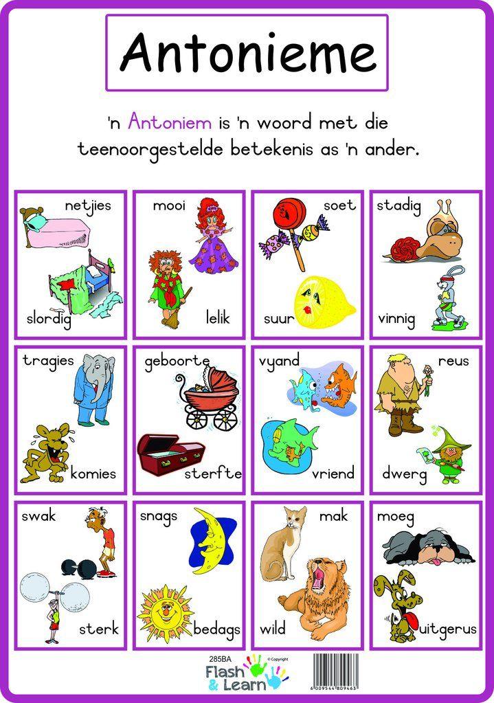 Antonieme Afrikaans language, Language worksheets, Kids