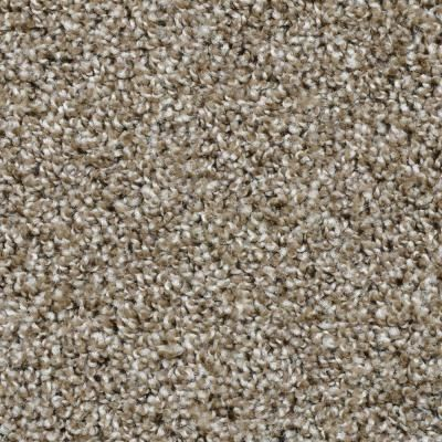 carpet home depot. add beauty to your home decor with this dignified color palisades carpet. fade resistant for added protection and easy maintain. carpet depot t